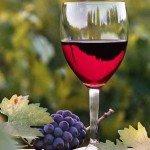 Вредно вино или полезно - определено вашими генами
